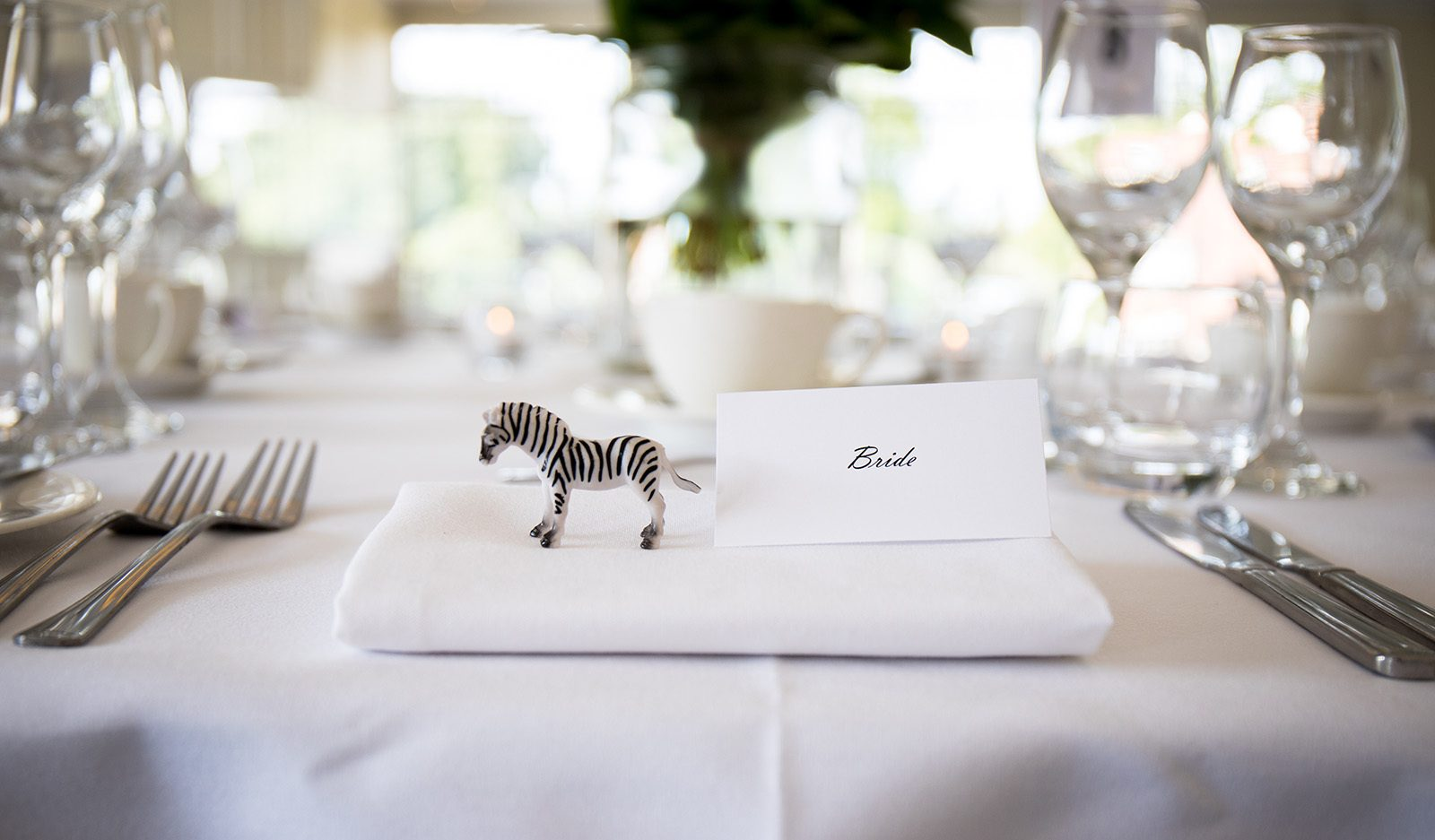 bride place setting ZSL London Zoo